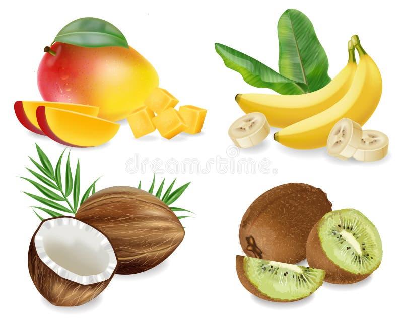 Lokalisierten realistische gesetzte Sammlungsfrüchte des Mango-, Kokosnuss-, Kiwi und Banane Vektors stock abbildung