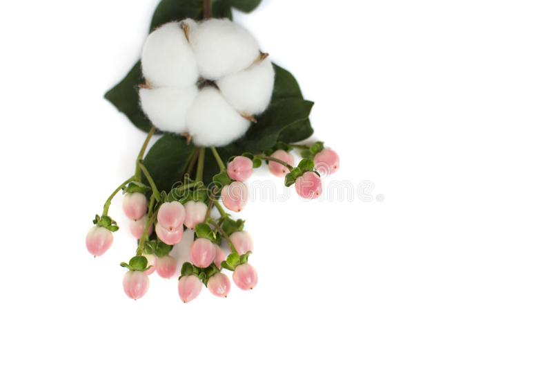 Lokalisierter Blumenstrauß mit einer Baumwollblume lizenzfreie stockfotos