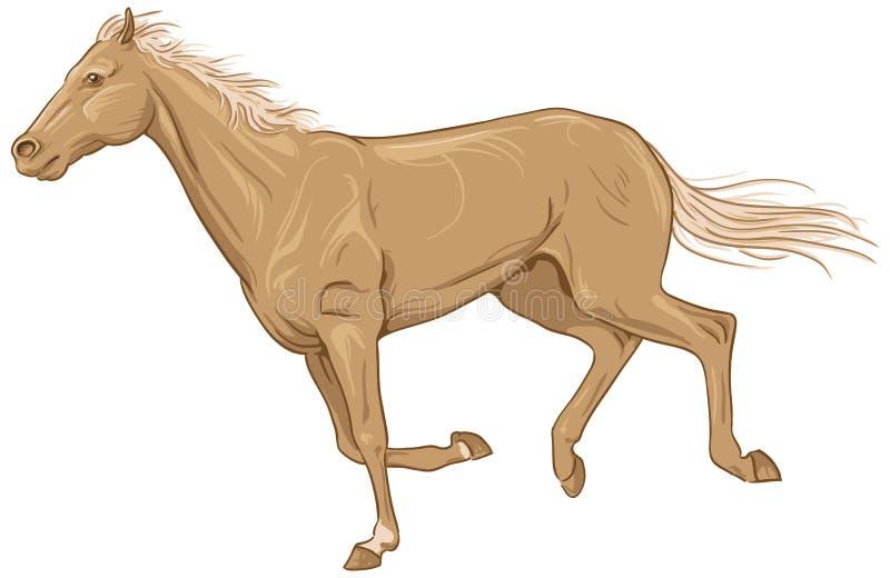 rennpferd stock abbildung illustration von jockey