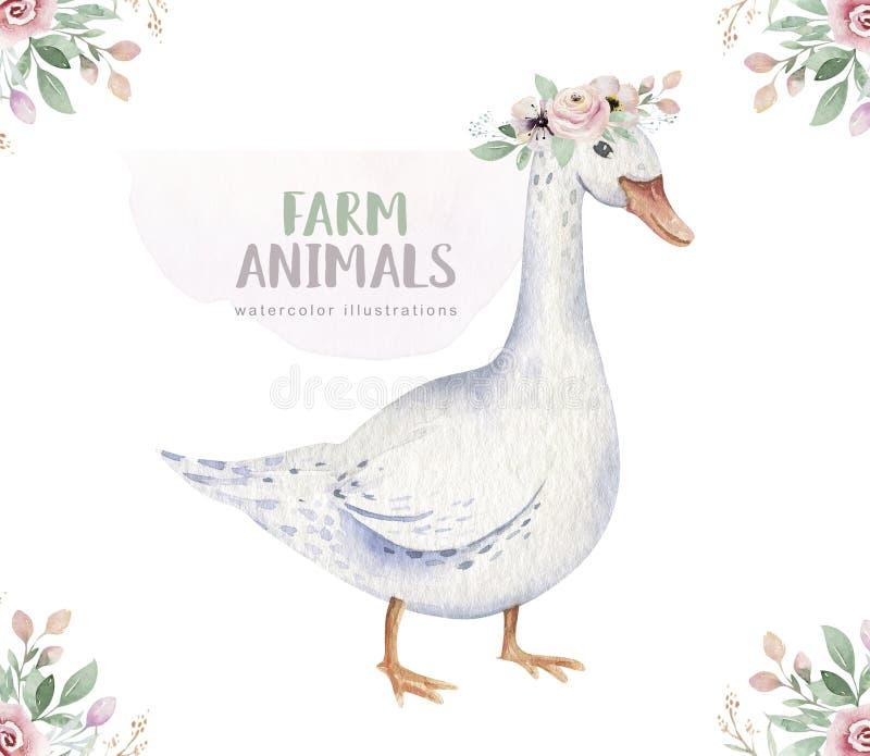 Lokalisierter Satz des Viehs Nette inl?ndische Bauernhofhaustier-Aquarellillustration Gansbaby-Karikaturzeichnung lizenzfreie abbildung