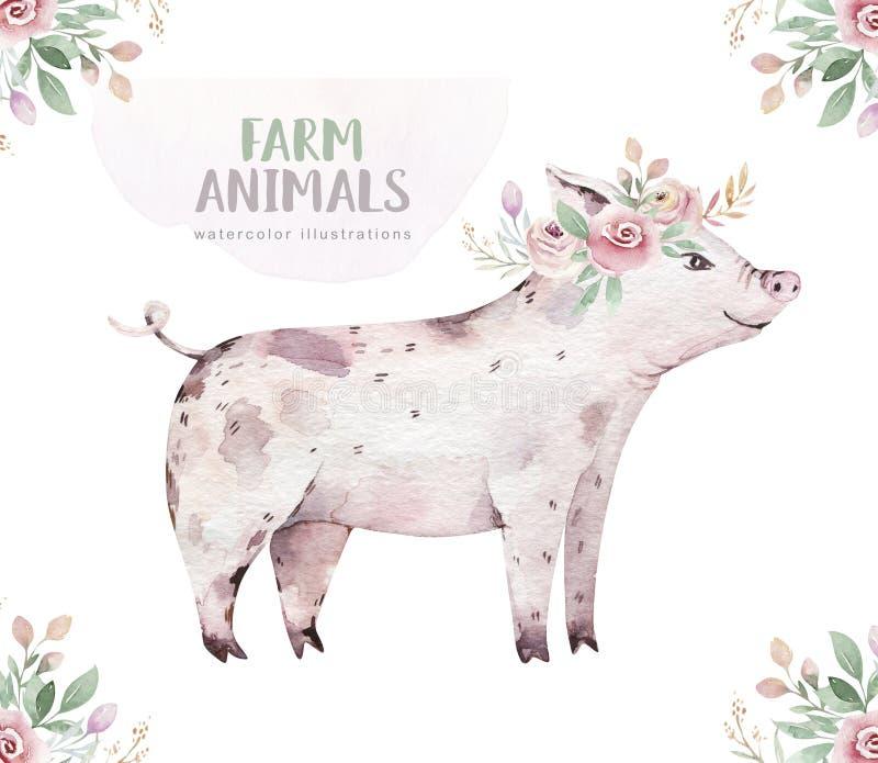 Lokalisierter Satz des Viehs Nette inl?ndische Bauernhofhaustier-Aquarellillustration Schweinbaby-Karikaturzeichnung stock abbildung