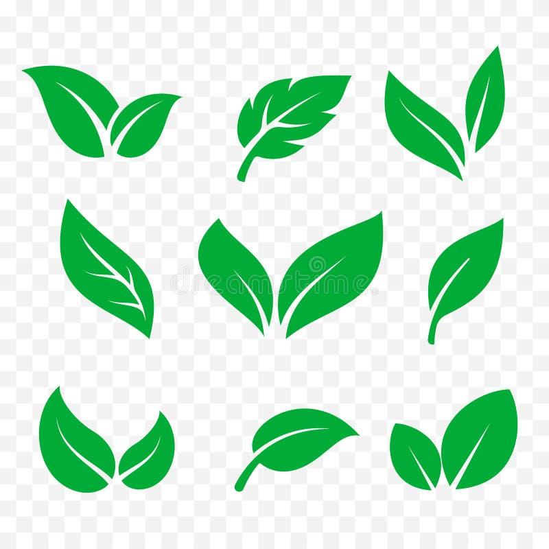Lokalisierter Vektorsatz der Blätter Ikonen Grünes Baumblatt, eco und organisches Biologo lizenzfreie stockbilder