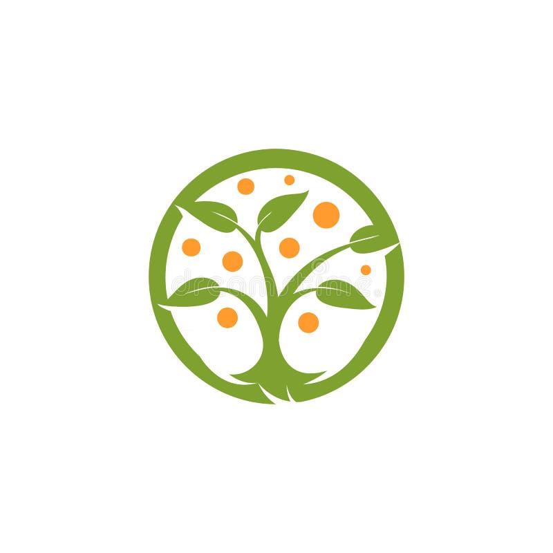 Lokalisiertes abstraktes Grün der runden Form, orange Farbbaumlogo Natürliches Elementfirmenzeichen Blätter und Stammikone Park o vektor abbildung