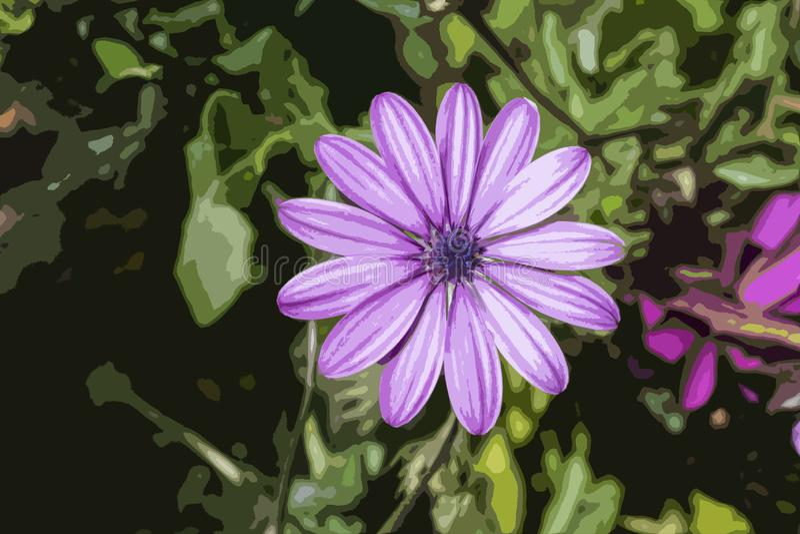 Lokalisiertes purpurrotes Gänseblümchen in einem Garten - Illustration stockbild
