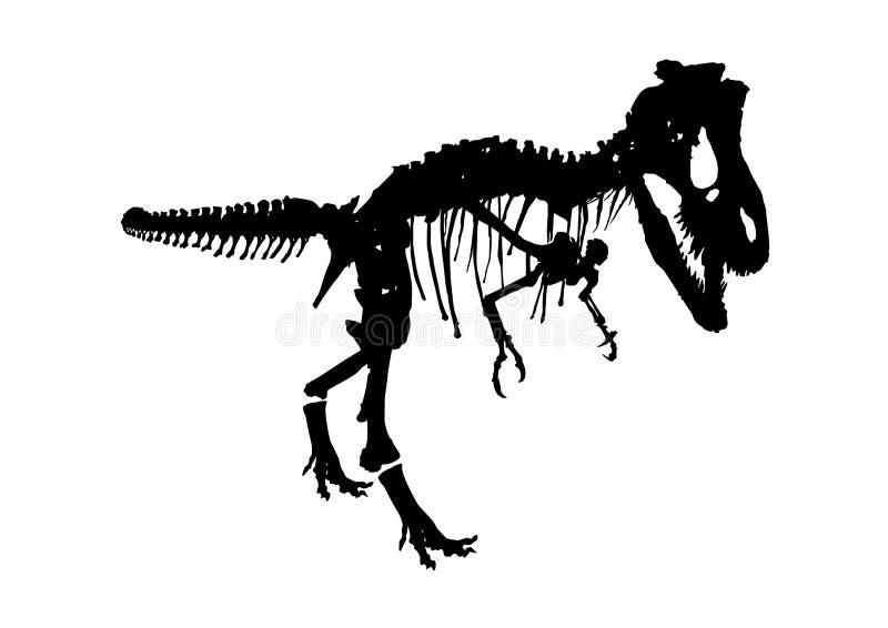 Lokalisiertes skeleton Fossil des Dinosauriers, Vektorillustration auf Weiß vektor abbildung
