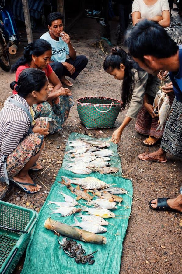 lokalna młodej kobiety sprzedawania ryba i żaby przy wioską wprowadzać na rynek zdjęcia stock