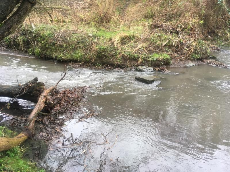 Lokalna rzeka, strumień/ zdjęcia stock