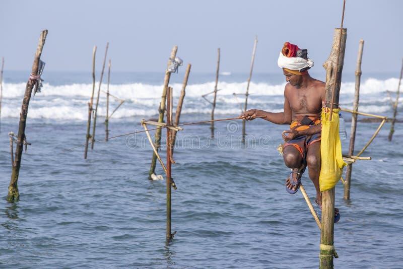 Lokalni rybacy łowią w unikalnym stylu Ten typ połów jest tradycyjny dla Południowego Sri Lanka w oceanie indyjskim obrazy stock