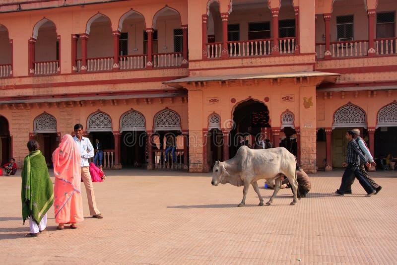 Lokalt folk som går runt om drevstationen, Sawai Madhopur, Indien royaltyfria foton
