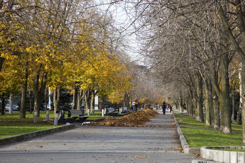 Lokalvård av gulingsidor på invallningen av staden av Dnepr arkivbilder