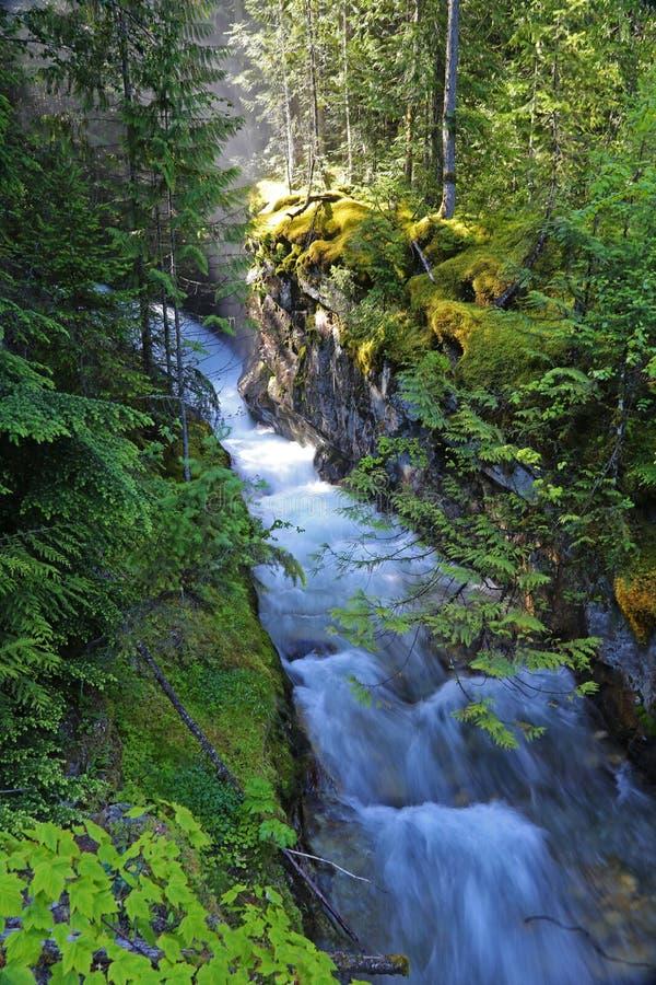 Loki Creek Falls imagenes de archivo