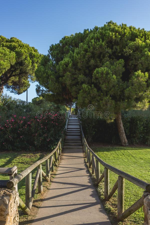 A path full of trees in the way to the beach in Punta Umbria, Huelva,Spain royalty free stock images