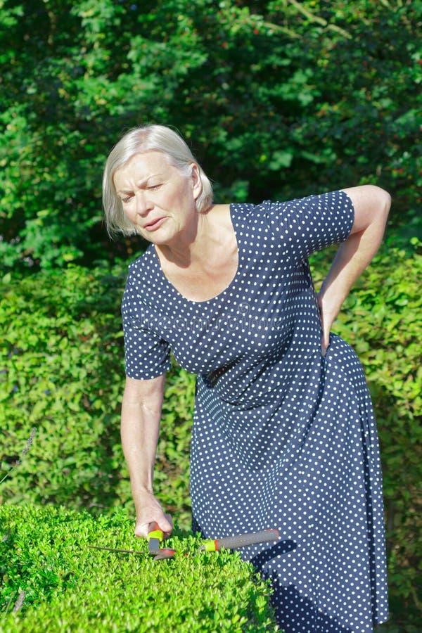 Lombaggine di giardinaggio di mal di schiena della donna senior fotografia stock libera da diritti