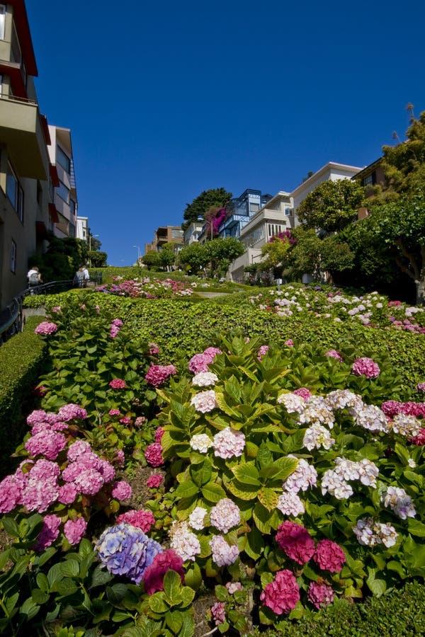 Lombardstraße, San Francisco stockfotografie