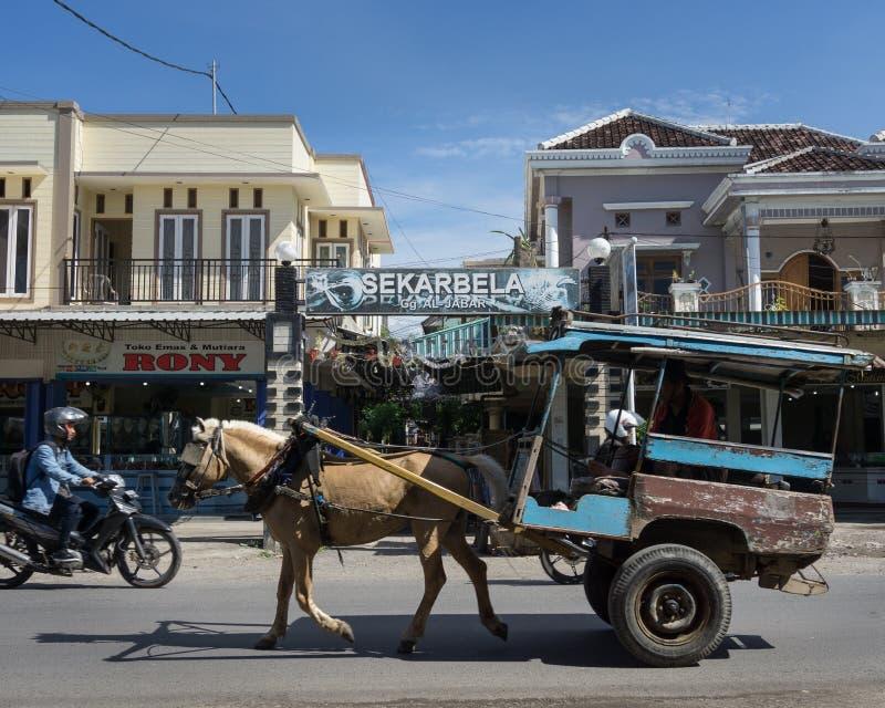 LOMBOK/INDONESIA-JANUARY 9 2018: traditionell hästdragen resor för en vagn i Sekarbela I motsats till i Bali den Lombok hästen royaltyfria bilder