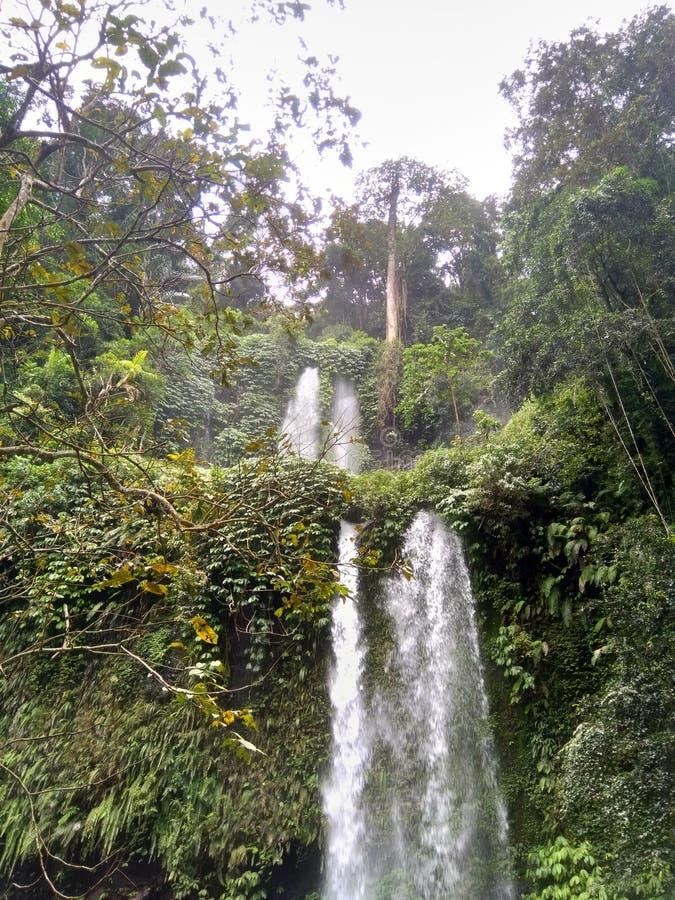 Lombokwaterval stock afbeeldingen