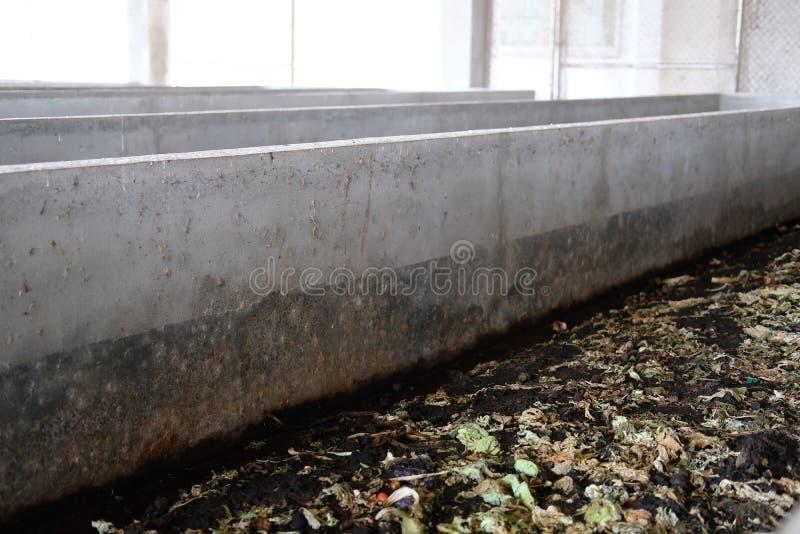 lombriz de tierra para producir el vermicompost del fertilizante del estiércol vegetal del abono foto de archivo libre de regalías