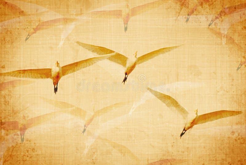 Lona envejecida de los pájaros fotografía de archivo