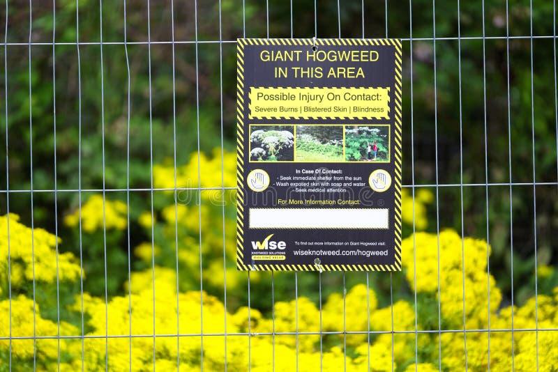 Londen Engeland/het UK - 20 Juli 2019: De reus hogweed het teken van het waarschuwingsgevaar in openbaar park stock foto