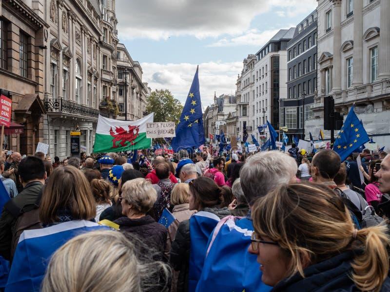 LONDEN, UK - OKTOBER 19 OKTOBER 2019: De volksstemmars, demonstranten tegen Brexit zwaaien EU-vlaggen en blijven borden stock foto