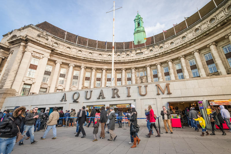 Download London Aquarium Editorial Photo - Image: 29185491