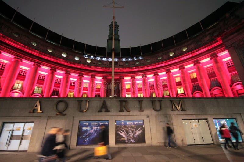 London Aquarium stock photography