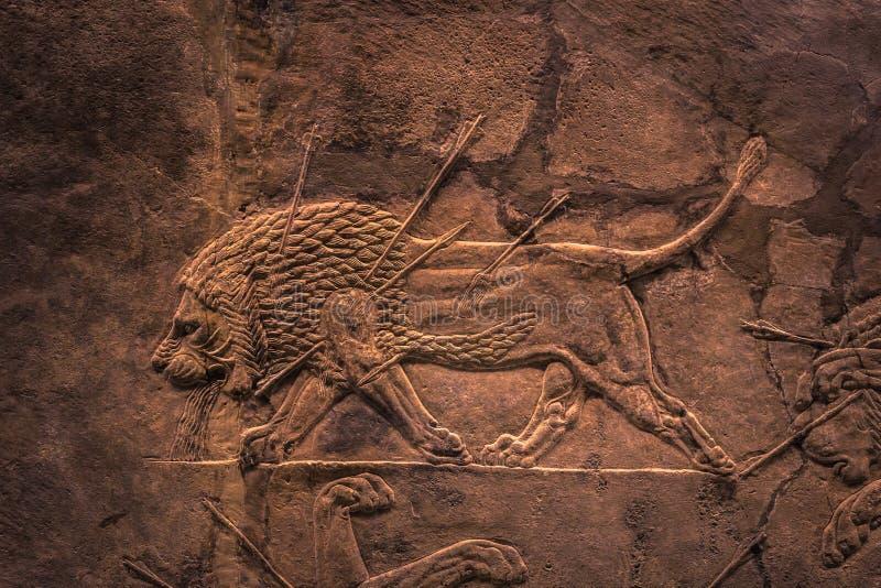London - Augusti 06, 2018: En lejonjakt som föreställs i assyrisk konst i det Brtitish museet i London, England arkivbilder