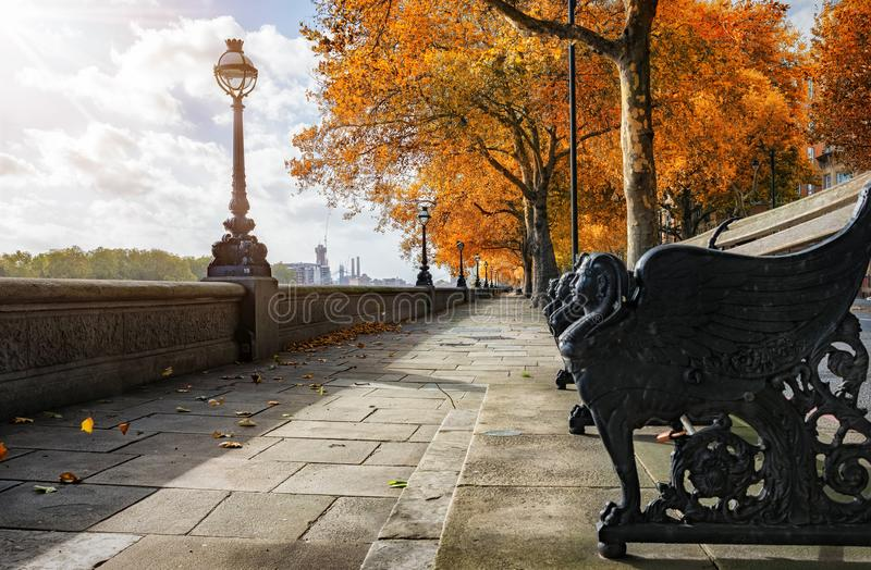 Chelsea Embankment during autumn time royalty free stock photos