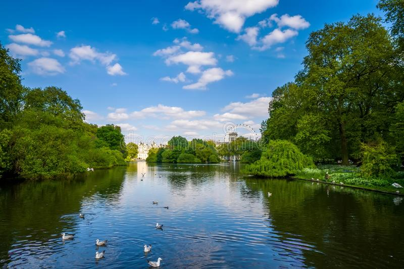 London city / England: View from St. James Park on London Eye royalty free stock photo