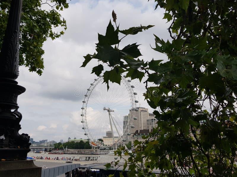 London Eye vom Damm stockfotografie