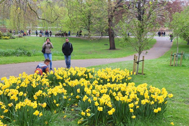 London-Frühlingspark stockfoto