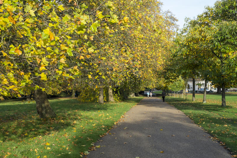 LONDON, GROSSBRITANNIEN - 13. NOVEMBER: Herbst in Kensington-Gärten mit Fuß stockbild