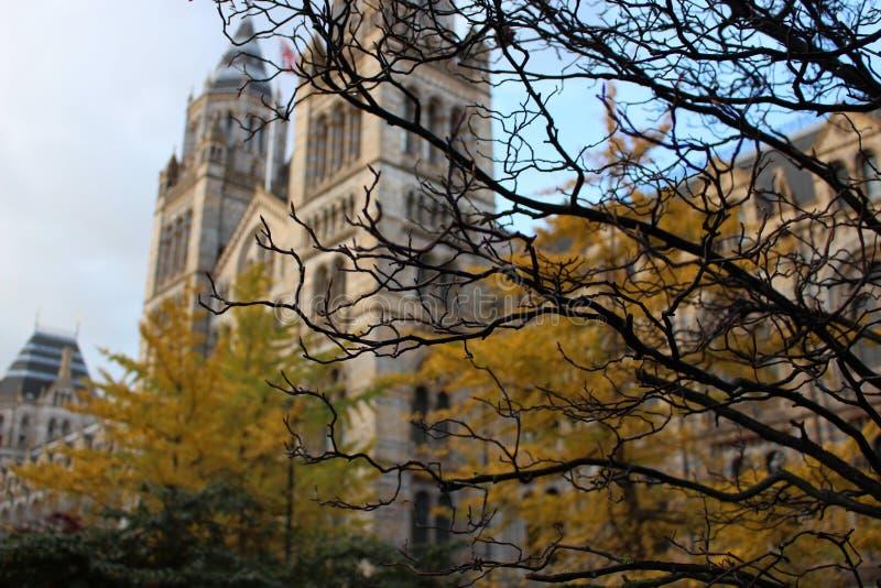 London Natural History Museum at autumn stock photo