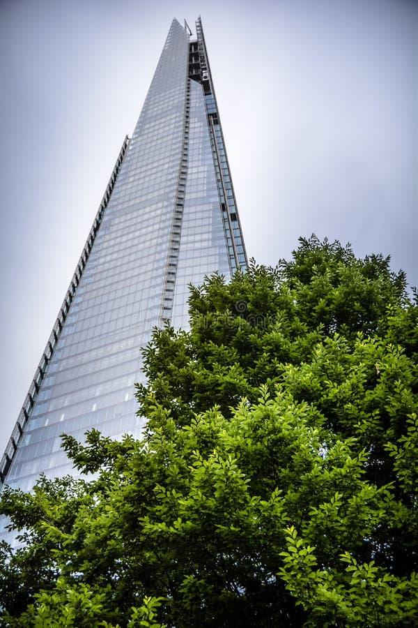London skyskrapa och träd royaltyfri bild