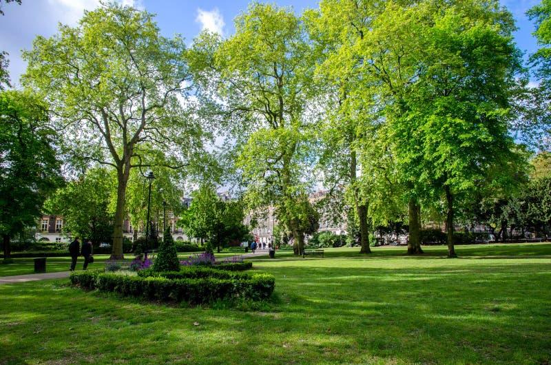 London stad/England: Träd i Russell Square parkerar royaltyfria foton