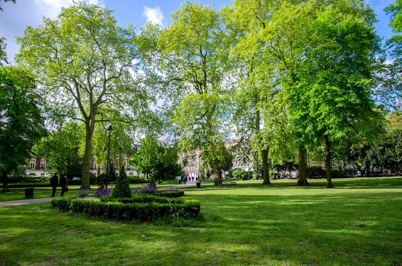 London-Stadt/England: Bäume in Russell Square-Park lizenzfreie stockfotos