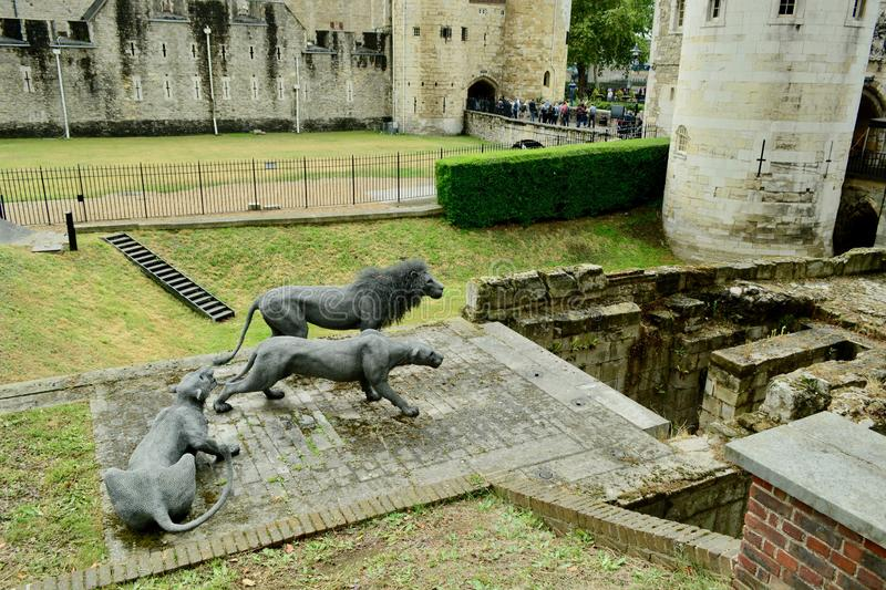 London, UK, July 2019. Lions on guard - wire sculptures by Kendra Haste. The old gate to the Tower of London. The Royal Menagerie is first referenced during the royalty free stock photo