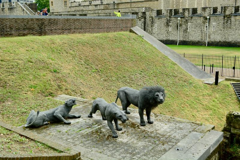 London, UK, July 2019. Lions on guard - wire sculptures by Kendra Haste. The old gate to the Tower of London. The Royal Menagerie is first referenced during the royalty free stock photos