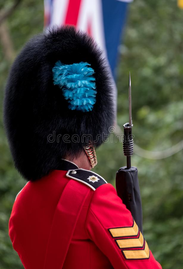 Royal Guard soldier in red and black uniform with bearskin hat stands to attention in The Mall during Trooping the Colour Parade royalty free stock photo