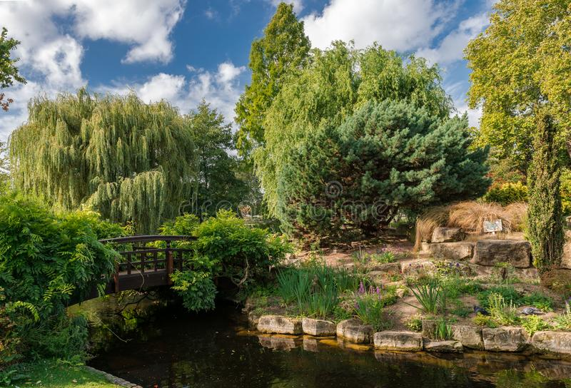 The Japanese Garden Island in Regent`s park. royalty free stock photography