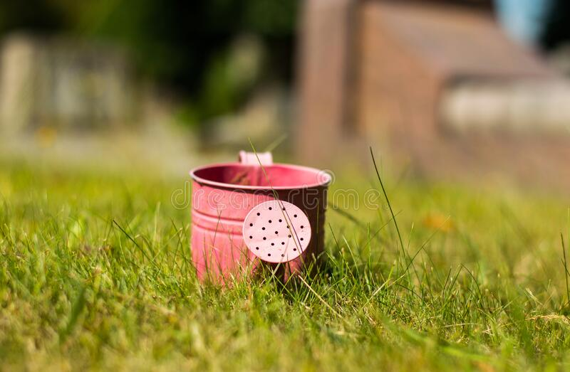 London. United Kingdom. 2017. London Cemetary. Hounslow. Water can found at London cemetery. Pink water can left alone among graves stock image