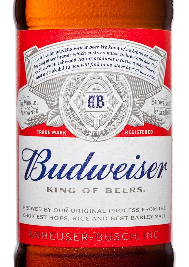 LONDRA, REGNO UNITO - 21 MARZO 2017: Imbottigli l'etichetta della birra di Budweiser su fondo bianco, una lager americana in prim immagini stock