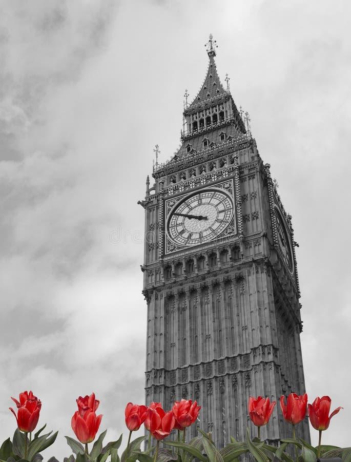 Londres Ben grande fotografia de stock royalty free