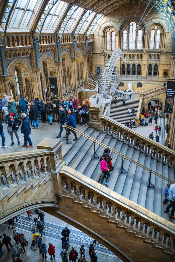 Londres Mus?e national d'histoire image libre de droits