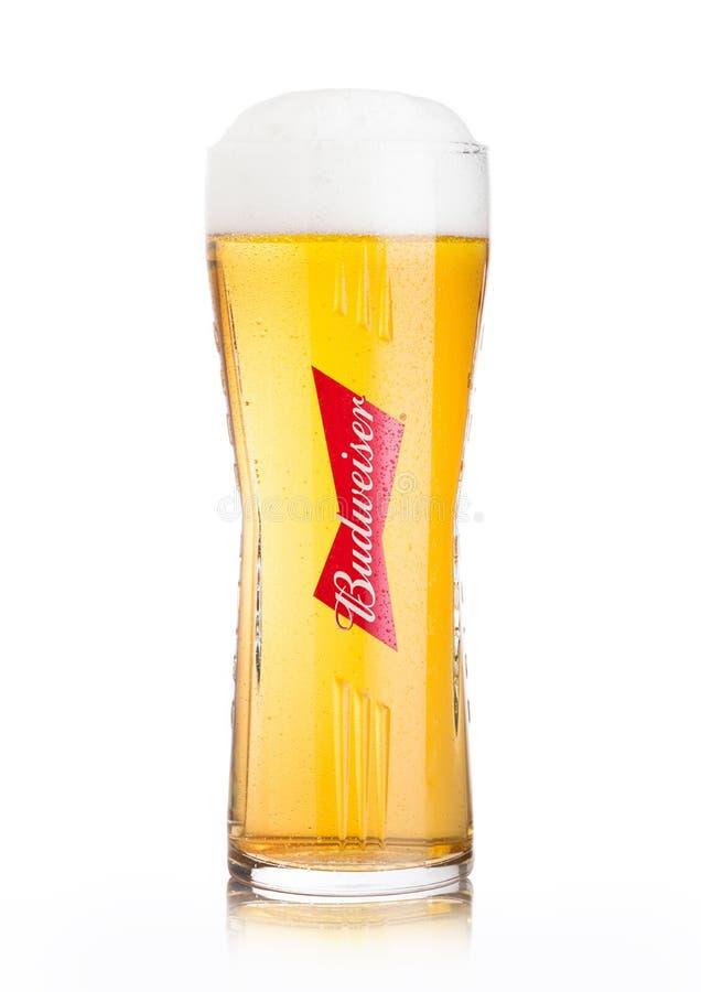 LONDRES, R-U - 2 JUIN 2018 : Verre original froid de bière de Budweiser sur le blanc, une bière blonde allemande américaine d'abo photographie stock