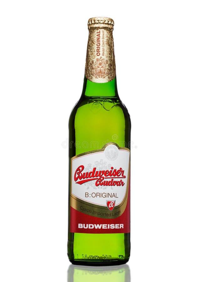 LONDRES, R-U - 30 MARS 2017 : Bouteille de bière de Budweiser Budvar sur le blanc, une des plus hautes bières de vente dans la Ré photos stock