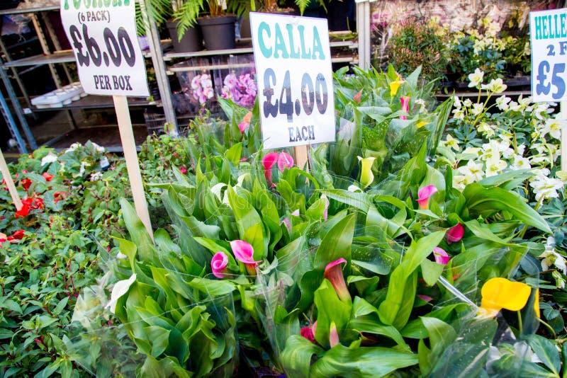 Londres, Reino Unido - 17 de abril de 2015: Mercado de domingo de la flor del camino de Columbia Los comerciantes de la calle est imagenes de archivo