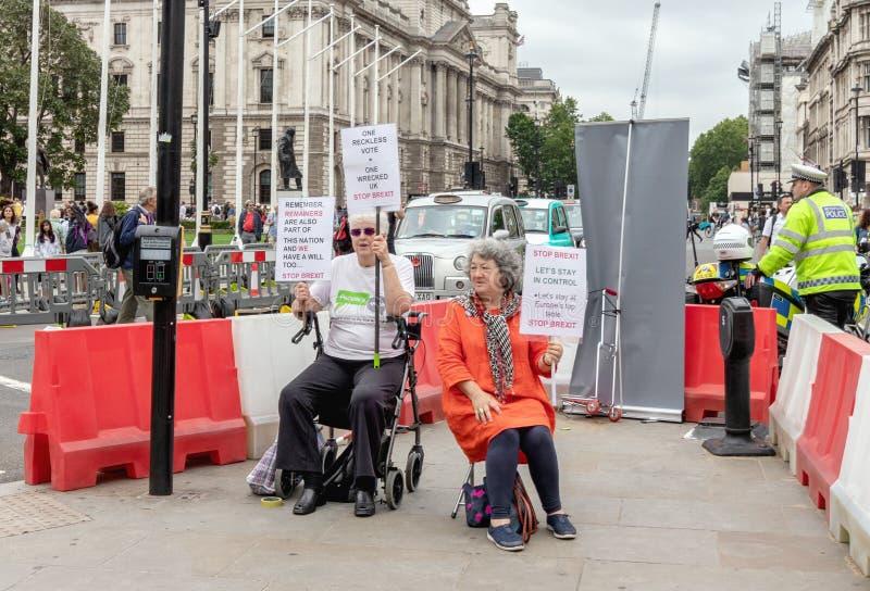 Londres/Reino Unido - 26 de junho de 2019 - dois protestadores do voto do pessoa que guardam sinais de Brexit da parada em um cru imagens de stock royalty free