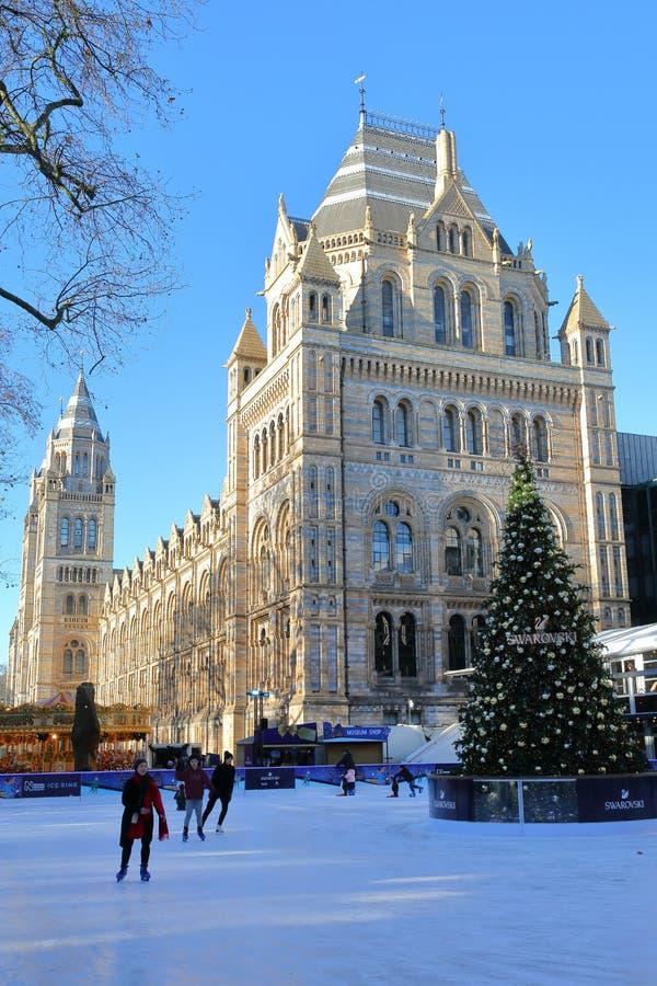 LONDRES, REINO UNIDO - 28 DE NOVEMBRO DE 2016: A pista da patinagem no gelo na frente do museu da história natural em Kensington  foto de stock royalty free