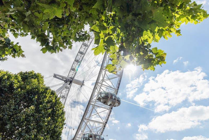 Londres/Reino Unido, el 15 de julio de 2019 - London Eye a través de árboles frondosos contra un cielo azul hermoso imágenes de archivo libres de regalías